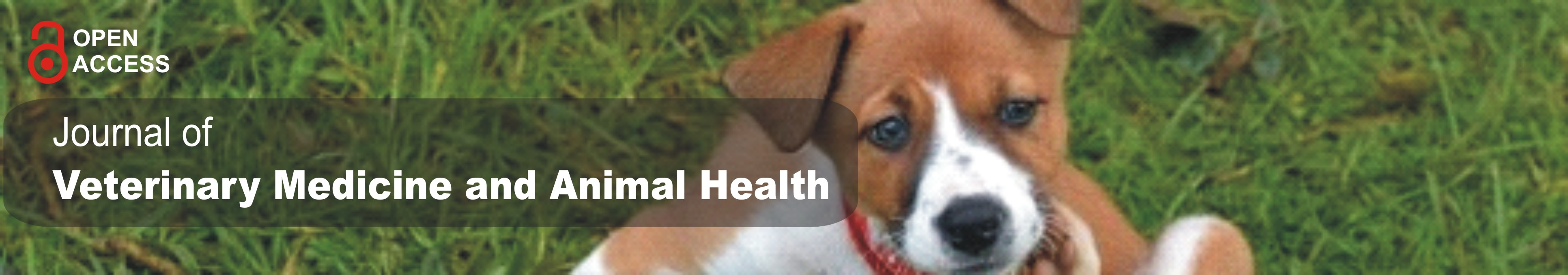 Journal of Veterinary Medicine and Animal Health