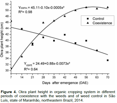 in the weed control periods, the okra plant had the lowest height at 32 dae  compared to the coexistence periods, except in plots with weed control at  seven