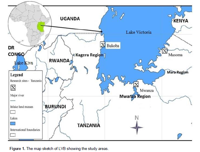 767fc03e35e8 ... Bukoba Misenyi for Kagera and Musoma for Mara (Figure 1). Criteria for  selecting the area were the extent of water resource governance challenges