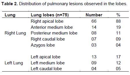 congestion pulmonaire bovin causes