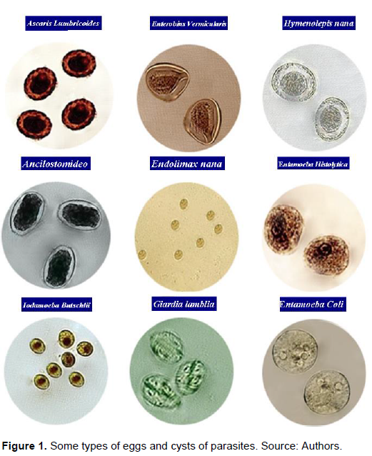 Intestinal Parasites >> Journal Of Public Health And Epidemiology Prevalence Of